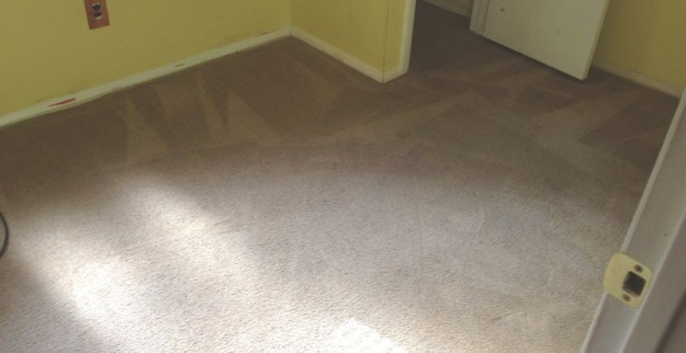 carpet cleaning company nj