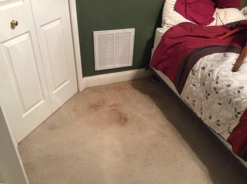 beforecarpets1