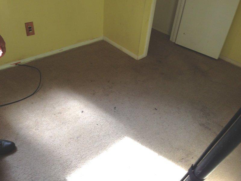 beforecarpets3