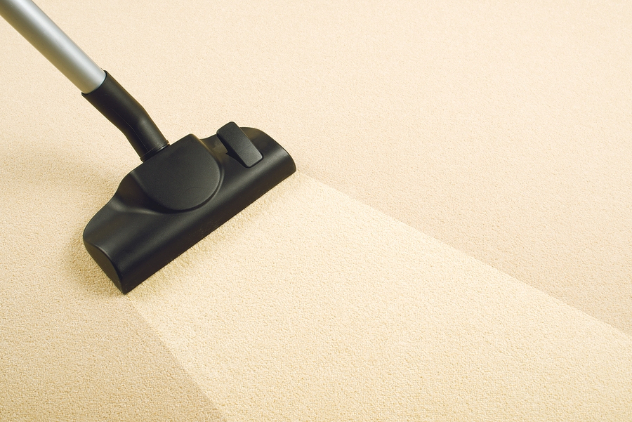 carpet cleaning company toms river