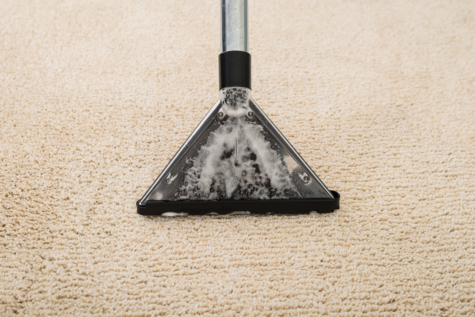 House Cleaning Companies in Ocean County
