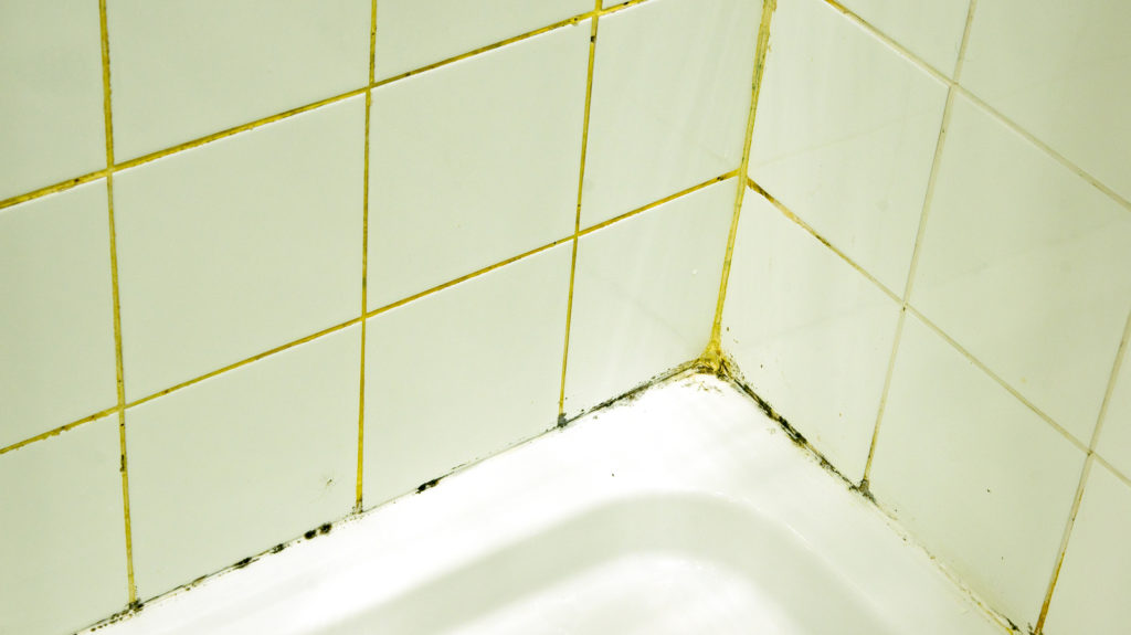 Tile and grout cleaning tips to prevent mold and mildew for How to clean bathroom grout mold