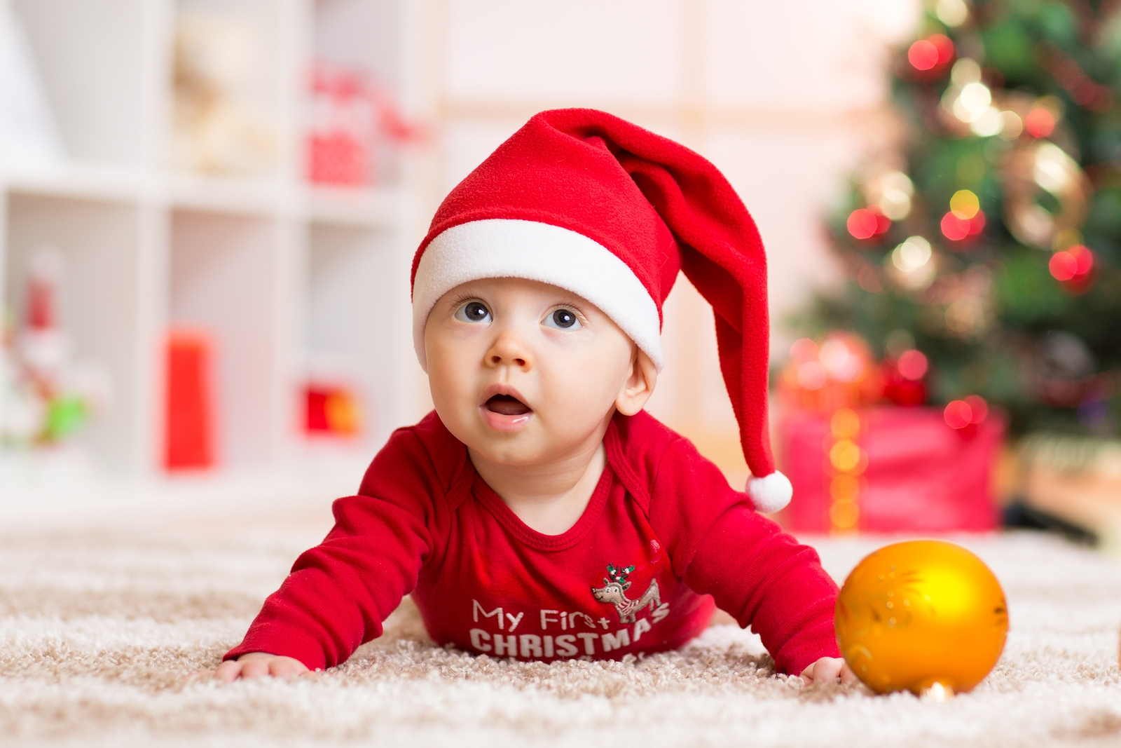 Before You Deck the Halls, Hire a Carpet Cleaning Service