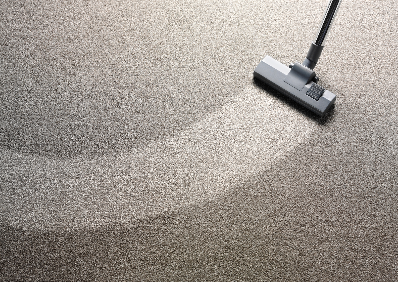 Local Carpet Cleaners Toms River
