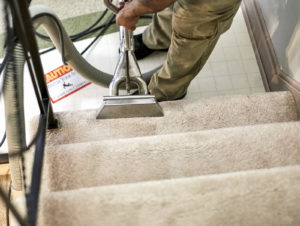 Carpet Cleaner Beachwood