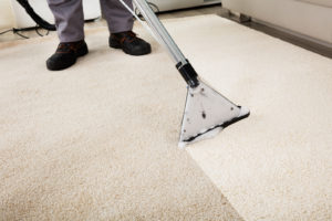 carpet cleaning nj