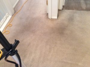 cleaning services nj