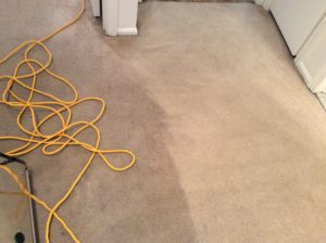 carpet cleaning service nj