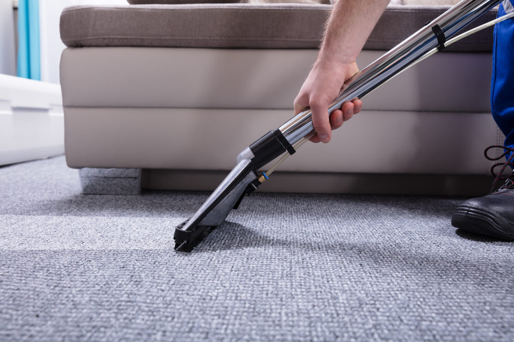 professional carpet cleaners ocean county