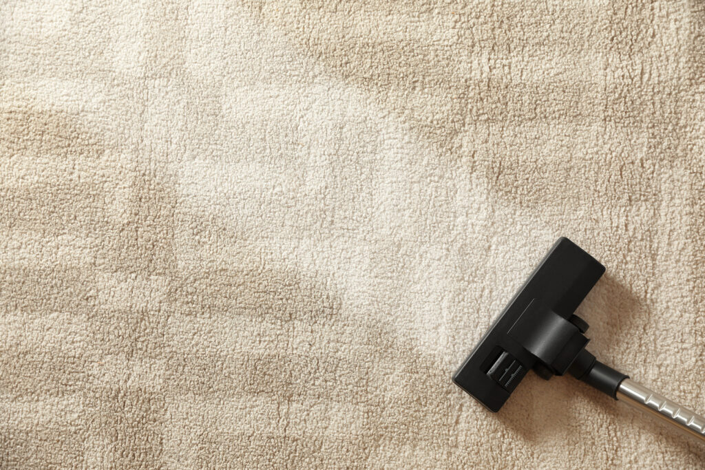 Best way to clean area rugs