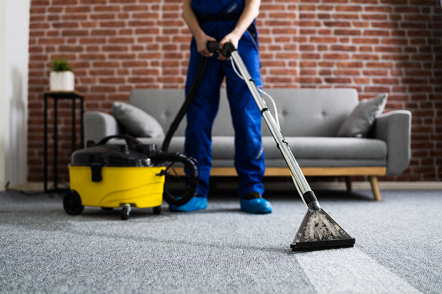 How to Find the Best Carpet Cleaning Service In Freehold NJ